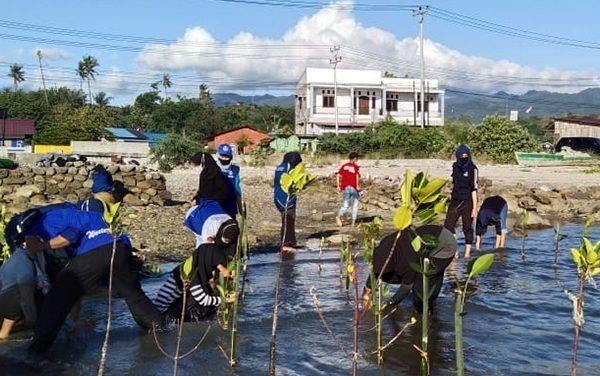 Peringati Hari Hutan Sedunia, Pesisir Pantai Mamboro Ditanami 500 Bibit Mangrove