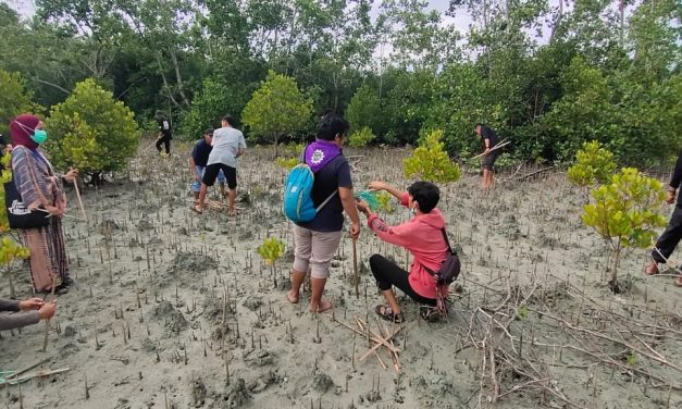 Kolaborasi Komunitas Motor dan Penggiat Alam Bebas di Touna Programkan 1 Juta Mangrove