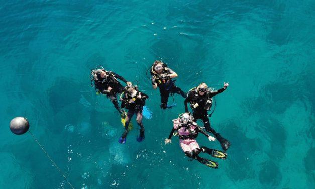 Keindahan Bawah Laut Tersembunyi di Pantai Lolaro Kecamatan Tinombo