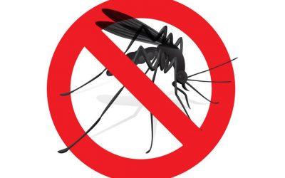 BTKLPP Kemenkes Lakukan Kajian Kelayakan Eliminasi Malaria di Parigi Moutong